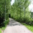 Cesta po hrázi rybníka