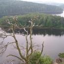 Zalesněný ostrůvek uprostřed Seče