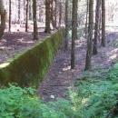 Protitankové zátarasy jen tak v lese nad Bartošovicemi